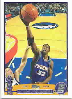 AMARE STOUDEMIRE CARDS